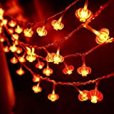 HOHOTIME 50 LED Red Lanterns String Lights, 16.5 Feet Chinese New Year String Lights Battery Operated with 6 Glitter Chinese Letters Pendants, Indoor Outdoor Decoration for Spring Festival, Christmas