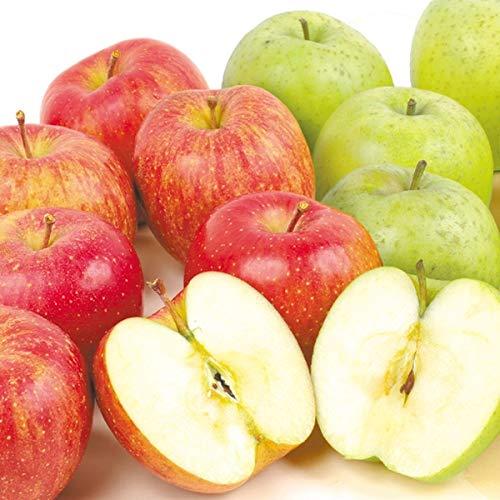 国華園 青森産りんごセット ふじ&王林 10�s(各5kg) 1組 りんご