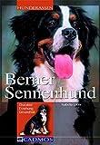 Berner Sennenhund: Charakter, Erziehung, Gesundheit (Cadmos Hunderassen)