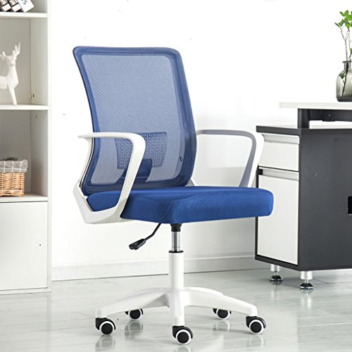 Canyi Z Computer Stuhl Büro schwarz Pulley Bürostuhl multifunktionale Bund Mesh Stuhl Swivel Lift Konferenzstuhl Multi-Color optional (Farbe : 10)