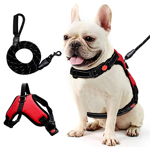Step-in Dog Harness,Small Dog Harness and Leash Set,Soft Air Mesh Step-in Harness for Small Medium Breed,Band with A Free Heavy Duty 5ft Dog Leash-(M)