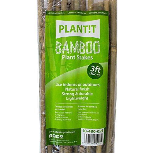 PLANT !T 10-480-055 Estacas de bambú, Paquete de 25 Unidades, Beige, 95x3x6 cm