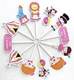 Circus Girl Cupcake Toppers12 pcs - Pink Cake Picks, Clown Birthday Decoration Party Supplies, Big Top Baby Shower Themed Celebration