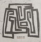 The Pineapple Thief: Versions of the Truth [Vinyl LP] (Vinyl)