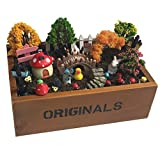 Vtete 7.5 Inch Succulent Plant Container Box with 4 Pcs...
