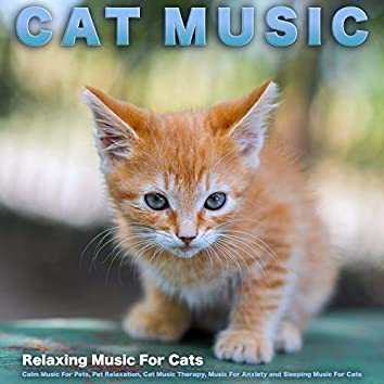 Cat Music: Relaxing Music For Cats, Calm Music For Pets, Pet Relaxation, Cat Music Therapy, Music For Anxiety and Sleeping Music For Cats