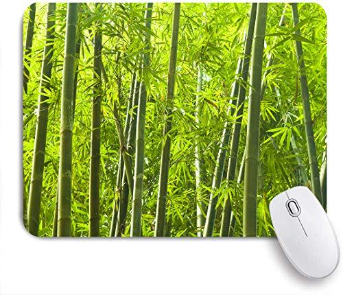 SUHOM Gaming Mouse Pad Rutschfeste Gummibasis,Abstrakter grüner Wald Lanscape Bambusbaum tropischer Regenwald Malaysia Naturparks asiatischer Garten,für Computer Laptop Office Desk,240 x 200mm
