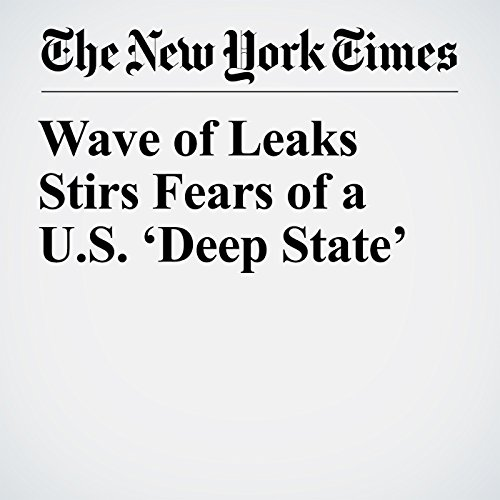 Wave of Leaks Stirs Fears of a U.S. 'Deep State' copertina
