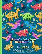 Livre de Coloriage Dinosaures et Dragons: Cahier de coloriage enfant, un grand cadeau pour les garçons, les filles, les jeunes enfants, les enfants d'âge préscolaire. (French Edition)