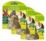 Dehner Friandises pour petits animaux
