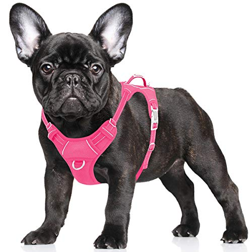 BARKBAY No Pull Dog Harness Large Step in Reflective Dog Harness with Front Clip and Easy Control Handle for Walking Training Running with ID tag Pocket(Pink,S)