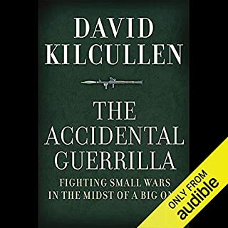 The Accidental Guerrilla audiobook cover art