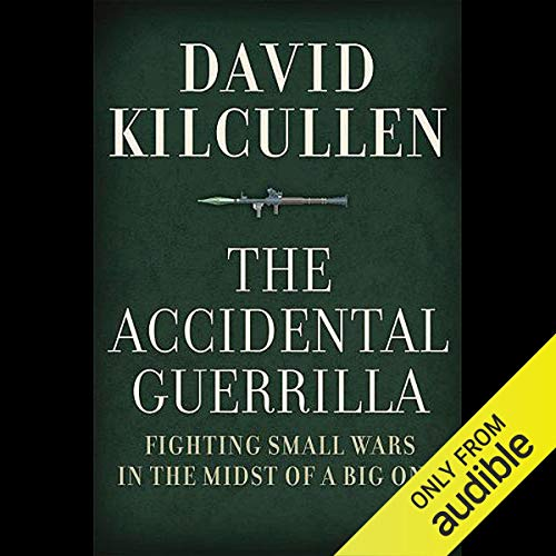 The Accidental Guerrilla cover art