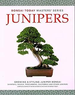 Junipers: Growing & Styling Juniper Bonsai (Bonsai Today Masters Series)