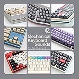 Mechanical Keyboard Sounds