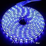 LMIAOM 220V LED de luz de tira impermeable de 5050 60LED / m Flexible LED cinta regulable Luces al aire libre cuerda 1m 2m 5m 10m 20m 30m 50m 100m Nueva barra de luz LED (Emitting Color : Blue)