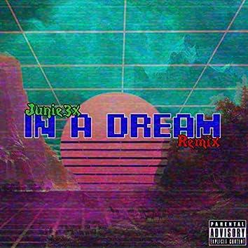 In A Dream (Remix)