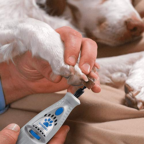 Dremel tool for dog nail