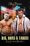 Big, Hard & Taboo: Taboo Gay Erotica Bundle 1