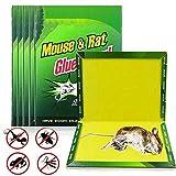 ZWSM Paquete De 10 Trampas para Ratones, Tablero De Pegamento para Ratas, Trampas para Ratas Fuertemente Pegajosas, Uso Interiores Y Exteriores