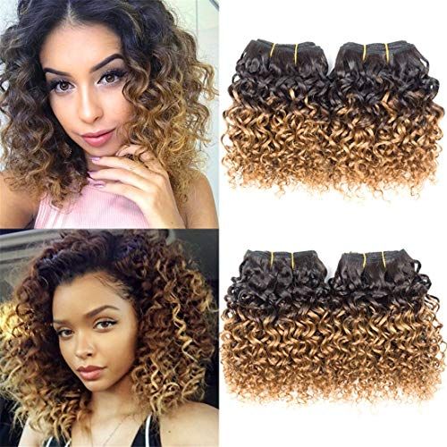 8 Inch Kinky Curly Huamn Hair Ombre Bundles T1B/27 Ombre Weave 6pcsFor Bob Hairstyle 300g/Pack Honey Blond Color Human Hair Extensions Ombre Weave Bundles Remy Hair Extensions(8Inch6Pcs,#T27)