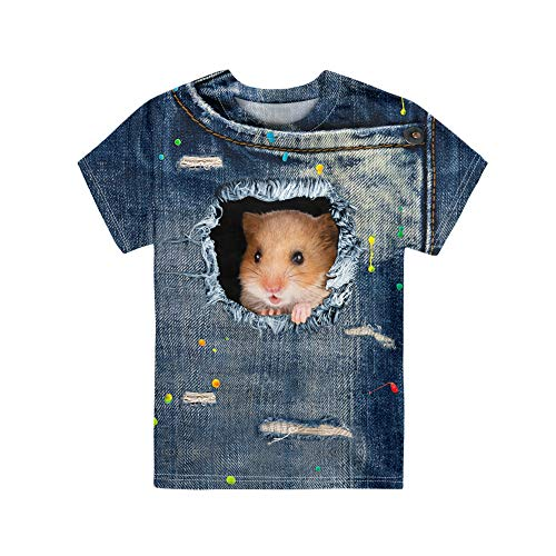 HUGS IDEA Boys T-Shirt Camiseta Informal De Animales para NiñOs Jerseys para NiñOs, PatróN De HáMster 3D Lindo Tops con Cuello En O Ropa TamañO 9 To 10