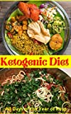 ketogenic diet all days of the year of keto: The Ultimate Guide Book Ketogenic Diet Lifestyle (English Edition)