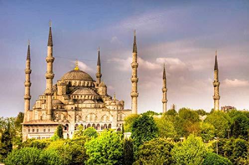 Puzzles para Adultos Rompecabezas de 500 Piezas Educativo Intelectual Descomprimiendo Juguete Divertido Juego Familiar Mezquitas en Estambul