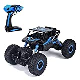 SQUIRREL® RC Car 1:20 Rechargeable 4Wd 2.4GHz Rock Crawler Off Road R/C Car Monster Truck Kids Toys...