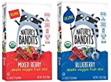 Nature's Bandits Organic Fruit & Veggie Stix, Variety Pack (Blueberry & Mixed Berry), 0.6 Ounce 5...