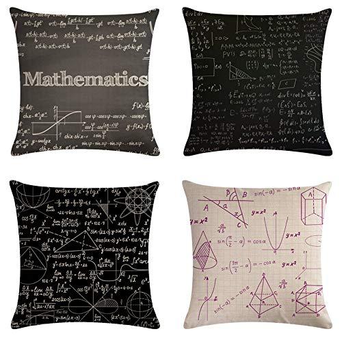 SCVBLJS Formula Matematica Cuscino Decorativo in Lino di Cotone Federa per Cuscino per Camera da Letto Interna da Esterno 45X45 Cm