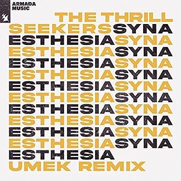 Synaesthesia (UMEK Remix)