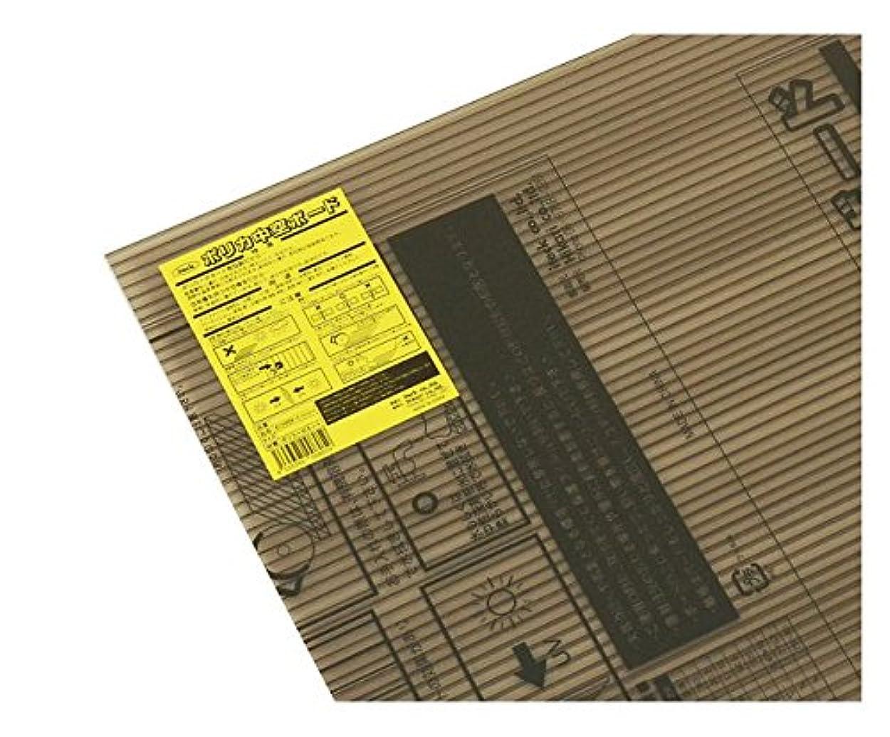 着飾るくつろぐ取り替える光 ポリカ中空ボード ブラウンスモーク 2枚入 4×900×900mm KTP990W-2-2