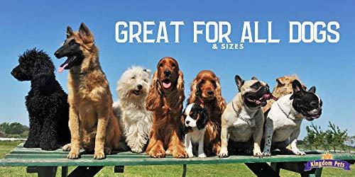 Kingdom Pets Premium Dog Treats, Duck And Sweet Potato Jerky Twists, 48 Ounce
