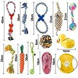 Zoom IMG-1 gomaihe giocattoli per cani set
