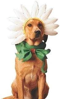 flower halloween costume for dogs