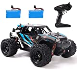 REMOKING RC Car,4WD 1/18 Scale 2.4Ghz Radio,High Speed 25MPH for All Terrain, Anti-Interference Electronic Off-Road Truck with 2 Rechargeable Batteries, Great Gifts for Kids and Adults