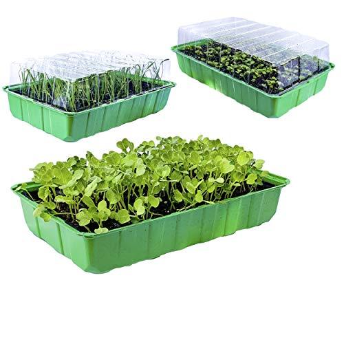 KliKil Anzucht Gewächshaus Seedbed Anzuchtsets 3 Einheiten 72 Fächer für Seed Garden- Komplett mit 3 Schalen 3 Saatbetten und 3 transparenten Deckel- semenzai di germinazione in Serre da interno