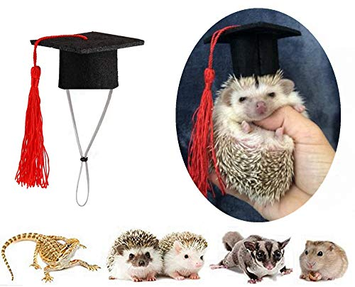 Small Animal Graduation Caps Mini Bachelor Hats with Bright Tassel Costume for Guinea Pigs,Hedgehog,Bird,Turtles,Hamster,Bearded Dragon,Rabbit,Ferret Photo Props Hat Holiday Costume Accessory (Red)