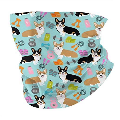 Xinflag@10 Corgi - Mancuernas y pesas rusas para perros con diseño variado, bufandas de cabeza multifuncionales, bandanas pasamontañas