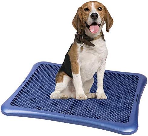Petphabet Puppy Training Pad Holder Floor Protection Dog Pad Holder Mesh Training Tray 28 X34 product image