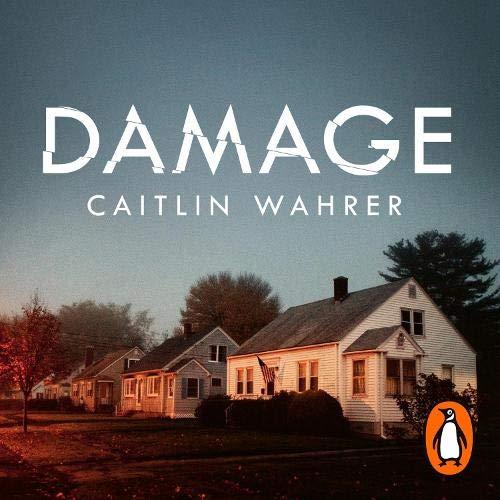 Damage cover art