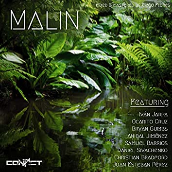 Malin (feat. Iván Jarpa, Ocarito Cruz, Bryan Gumbs, Anibal Jiménez, Samuel Barrios, Daniel Sivachenko, Christian Bradford & Juan Esteban Pérez)