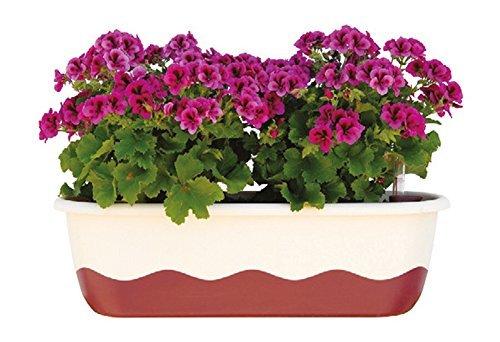 Blumenkasten Bewässerungskasten 'Mareta' 60 u. 80cm mit Selbstbewässerung, Farbe:Hell-Elfenbein + Weinrot, Größe/Durchmesser:80 cm