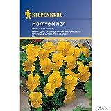 Sperli Blumensamen Hornveilchen, gelb/grün