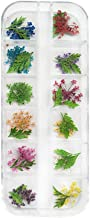 Shimigy 12 Colors Dry Flowers Mini Real Natural Flowers Nail Decoration Sticker