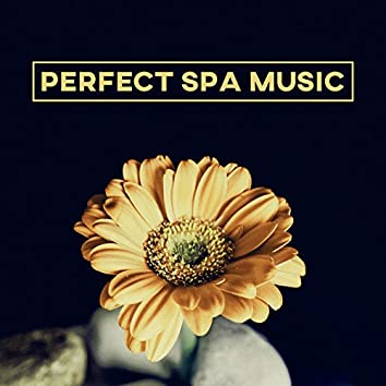 Perfect Spa Music – Relaxation Massage, Nature Spa Music to Relieve Stress, Reduce Anxiety, Relaxing Music, Beautiful Moments