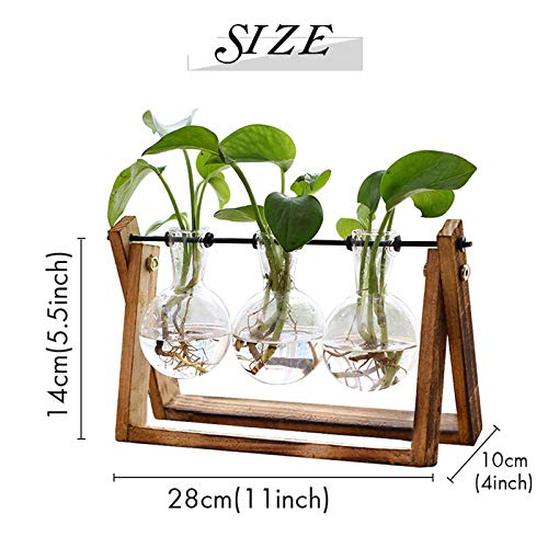 XXXFLOWER Plant Terrarium with Wooden Stand, Air Planter Bulb Glass Vase Metal Swivel Holder Retro Tabletop for Hydroponics Home Garden Office Decoration - 3 Bulb Vase
