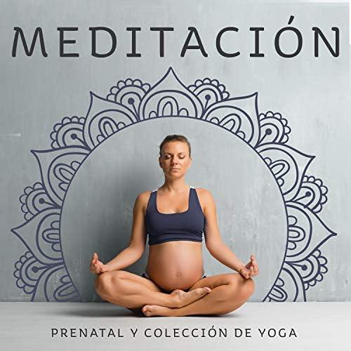 Relajación Meditar Academie, Prenatal Yoga Music Academy & Pregnancy and Birthing Specialists