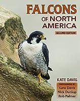 Falcons of North America